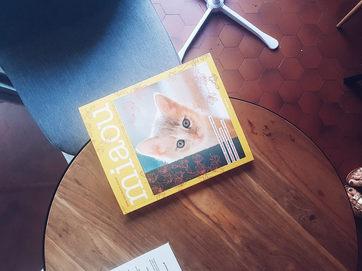 livre-chats-le-chat-gourmand-montpellier