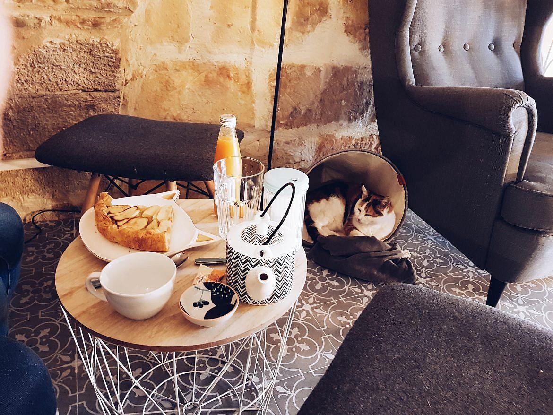 salon-de-thé-montpellier-le-chat-gourmand