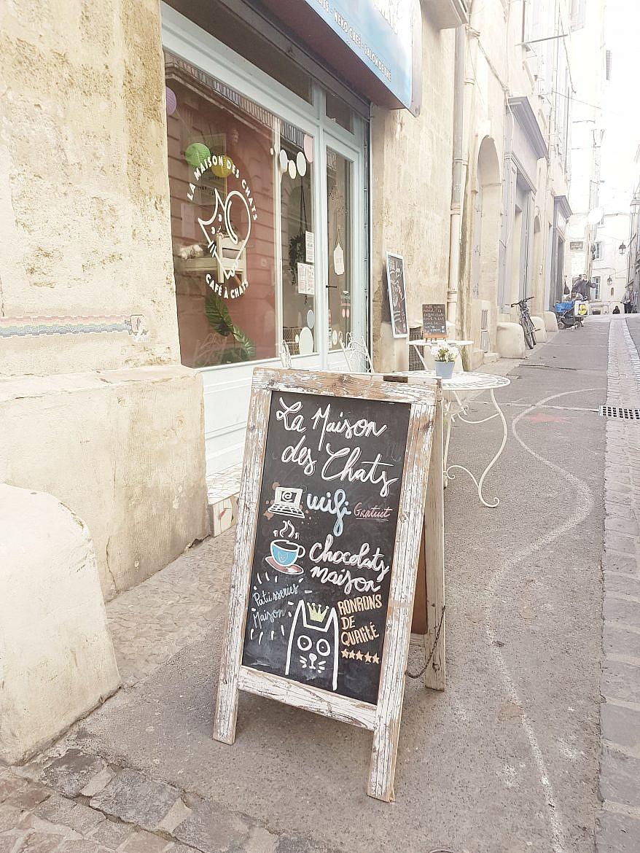 la-maison-des-chats-montpellier-terrasse