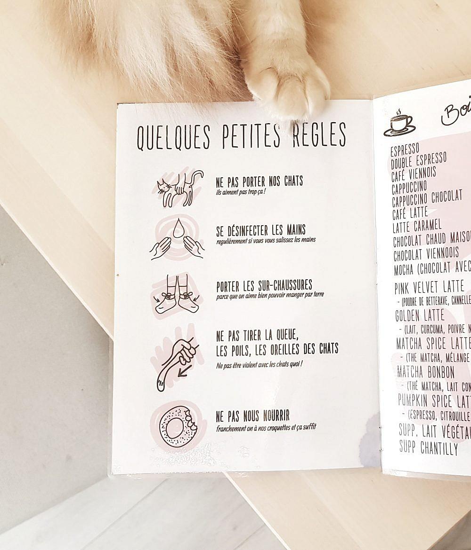 la-maison-des-chats-montpellier-carte-et-regles