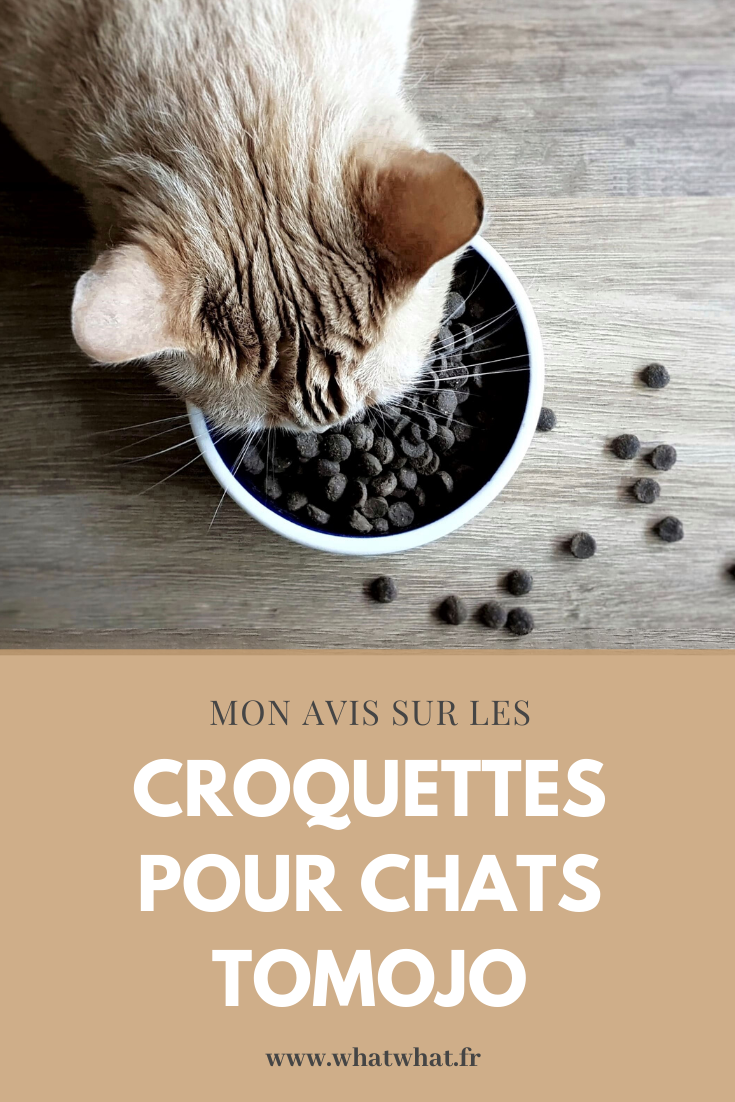 avis-croquettes-chats-insectes-tomojo