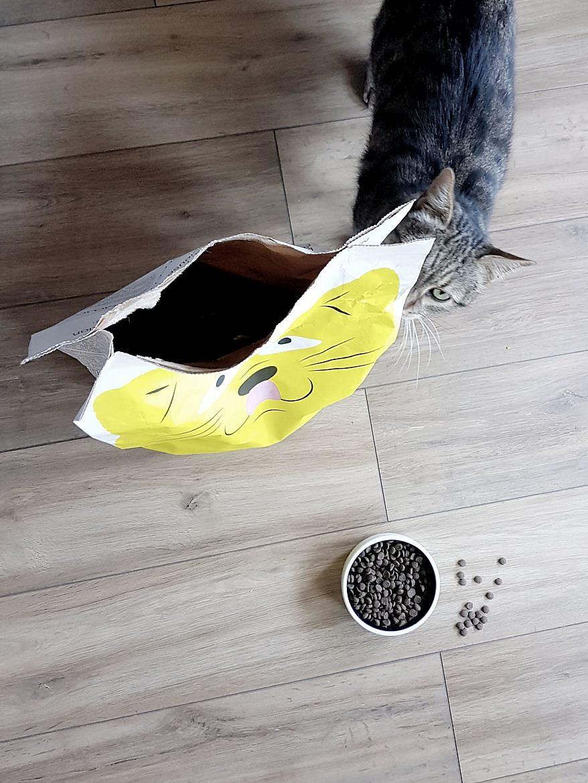 croquettes-tomojo-chat-tigrou