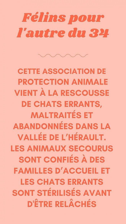 felins-pour-lautre-du-34