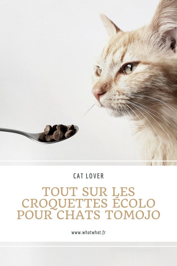 avis-croquettes-chats-ecologiques-tomojo