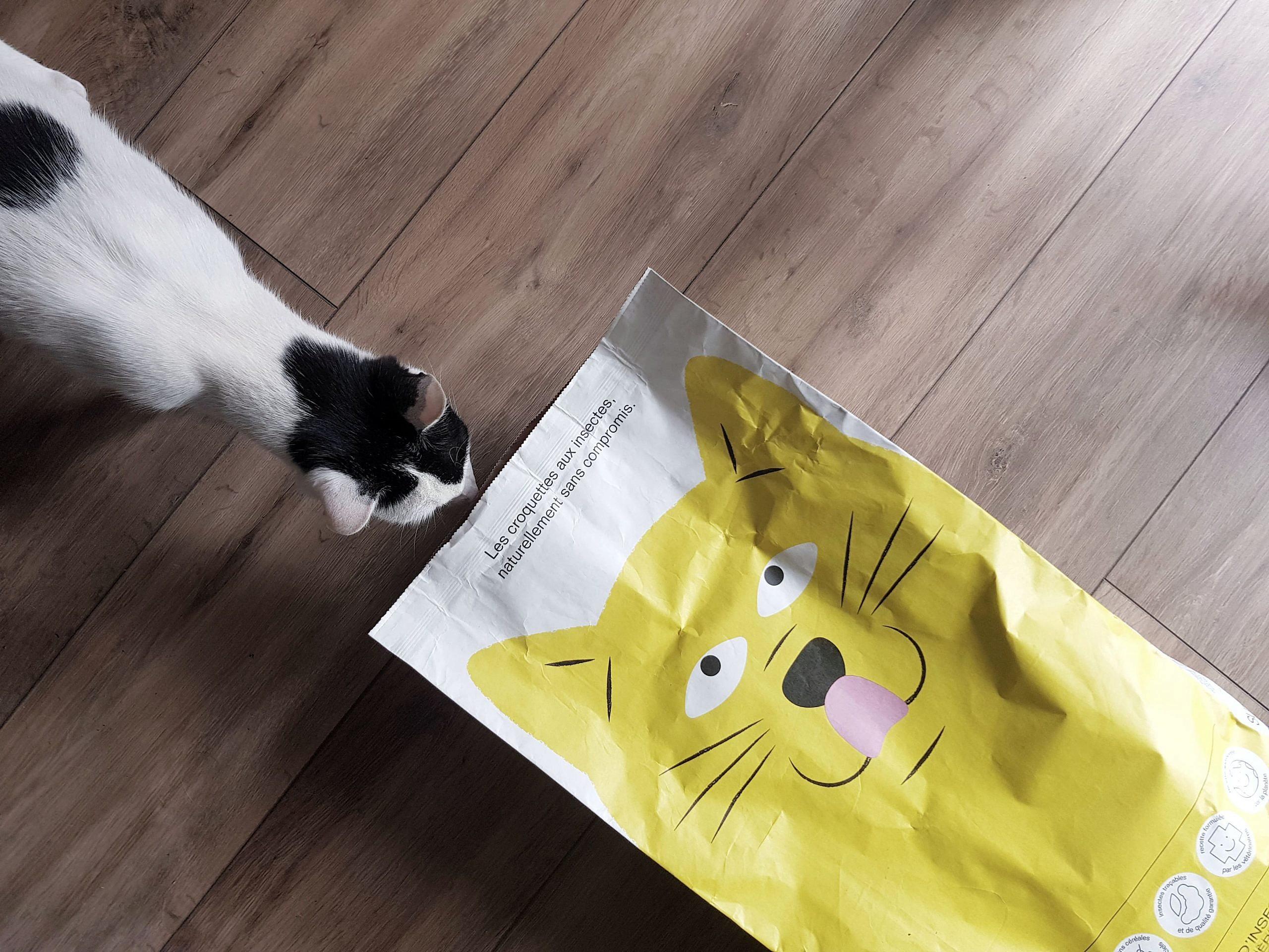 croquettes-chats-tomojo-otis